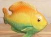 Fische, groß